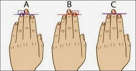 Délka prstů